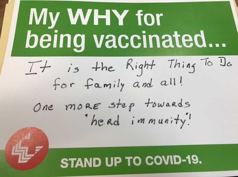 Covid Vaccine: A New Year's Present for the World